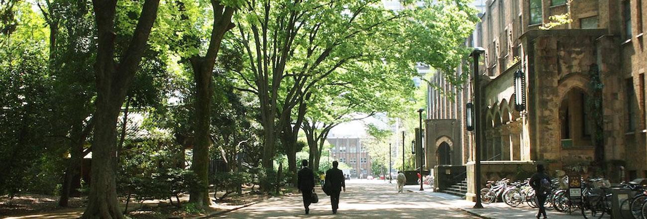 新緑の東京大学本郷校舎